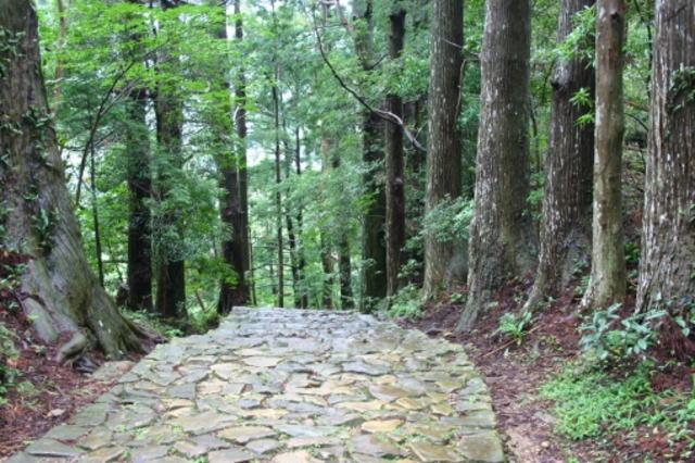 熊野の古道と石畳