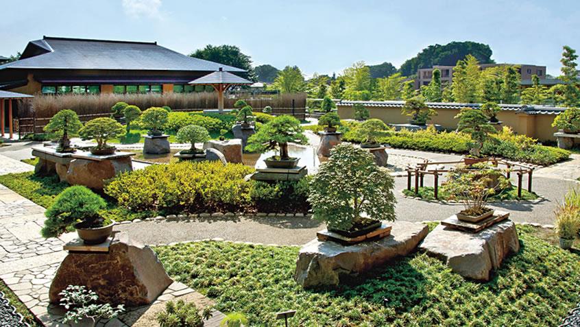 盆栽美術館春花園